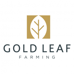 Gold Leaf Farming